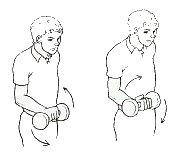 esercizi di pronazione e supinazione dell'avambraccio