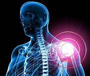 dolore alla spalla dovuto ai visceri