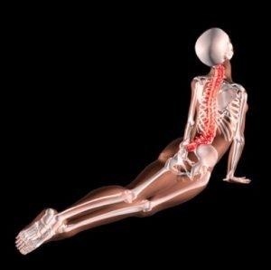 terapia mal di schiena